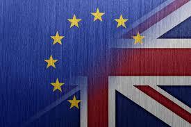 The Lessons from Brexit (Henri de Courtivron)